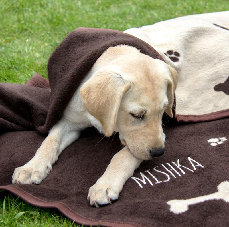 Personalised Dog Blanket Reversible Brown Cream With