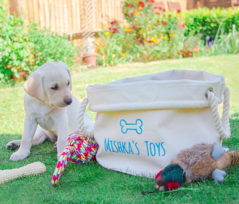 personalised dog toys basket
