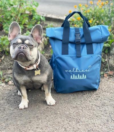 Dog Walking Backpack