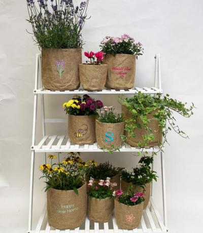 Hessian Planter
