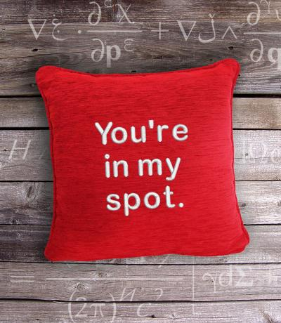 You are in my spot, Fan of Bing Bang Theory Gift