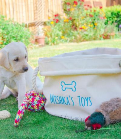 personalised dog toys basket