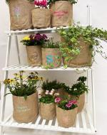 Hessian Plant Pot Holder
