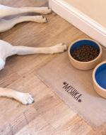 dog feeding mat